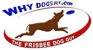 Why Dogs Fly